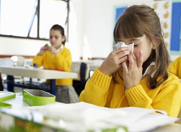 Carpet & Allergies